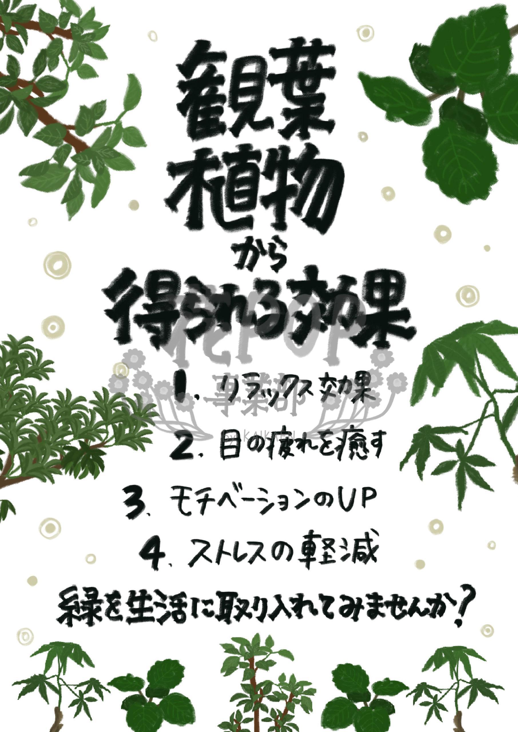 観葉植物から得られる効果