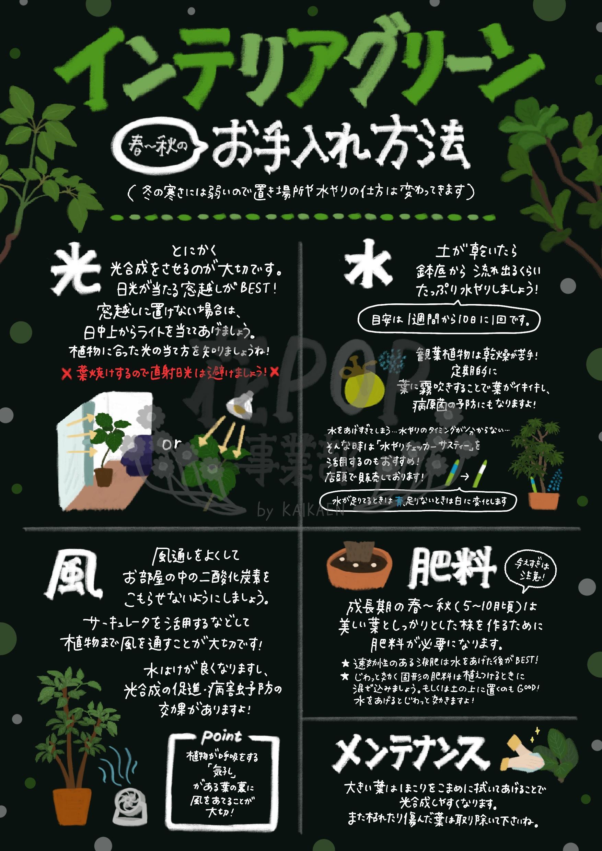 インテリアグリーンのお手入れ方法